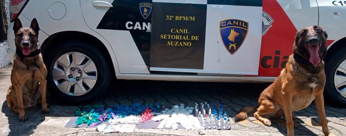 Equipe do Canil da PM apreende mais de 3 quilos de drogas no Jardim Dona Benta