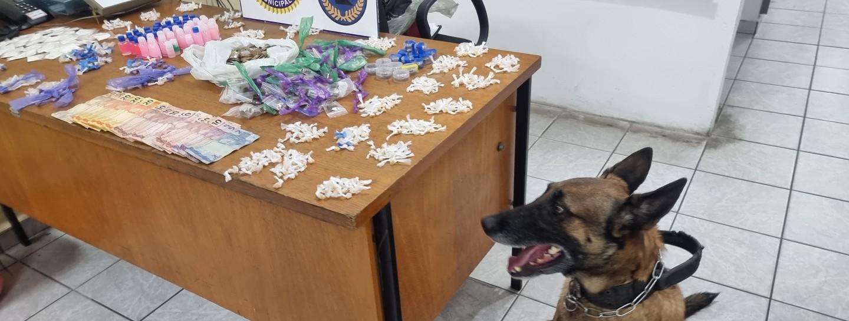 Canil da GCM intensifica combate ao tráfico de drogas nos bairros