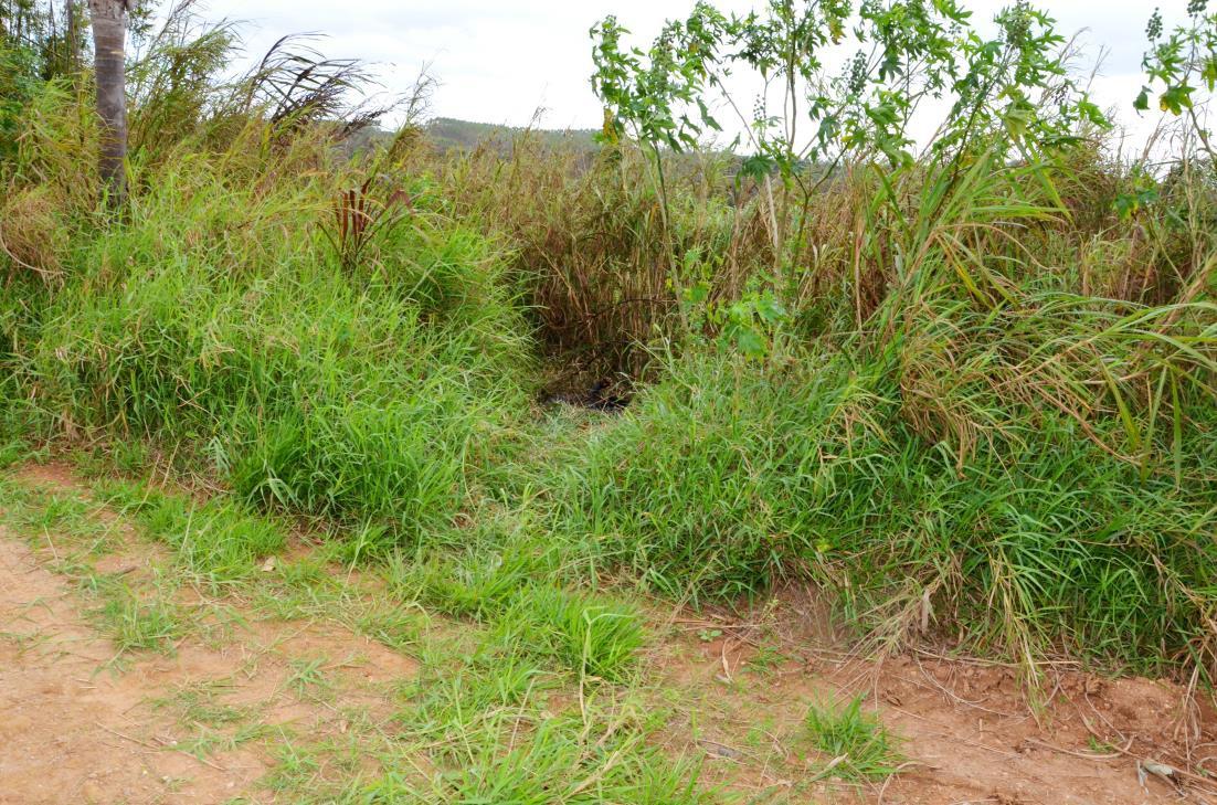 Corpo foi encontrado carbonizado em uma mata em Jundiapeba