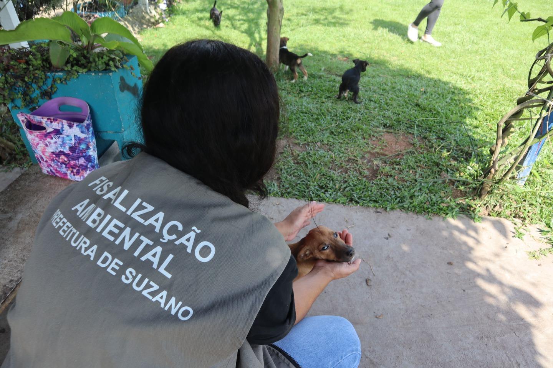 Meio Ambiente verifica suspeita de maus tratos na Vila Amorim