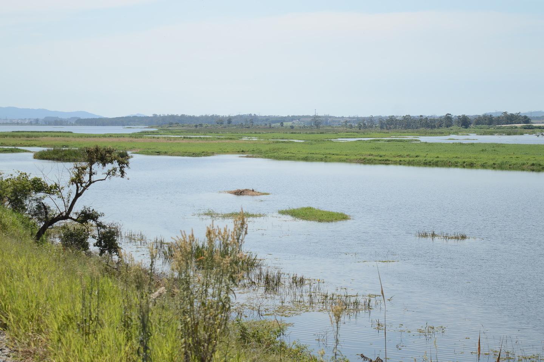 Represa de Taiaçupeba faz parte do Sistema do Alto Tietê